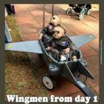 Hiring a wingman
